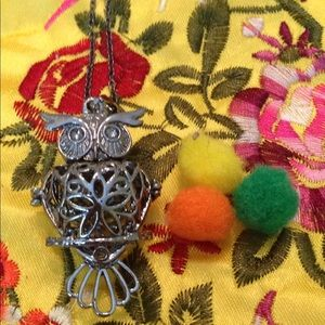 Jewelry - Aromatherapy owl necklace 22 inches long